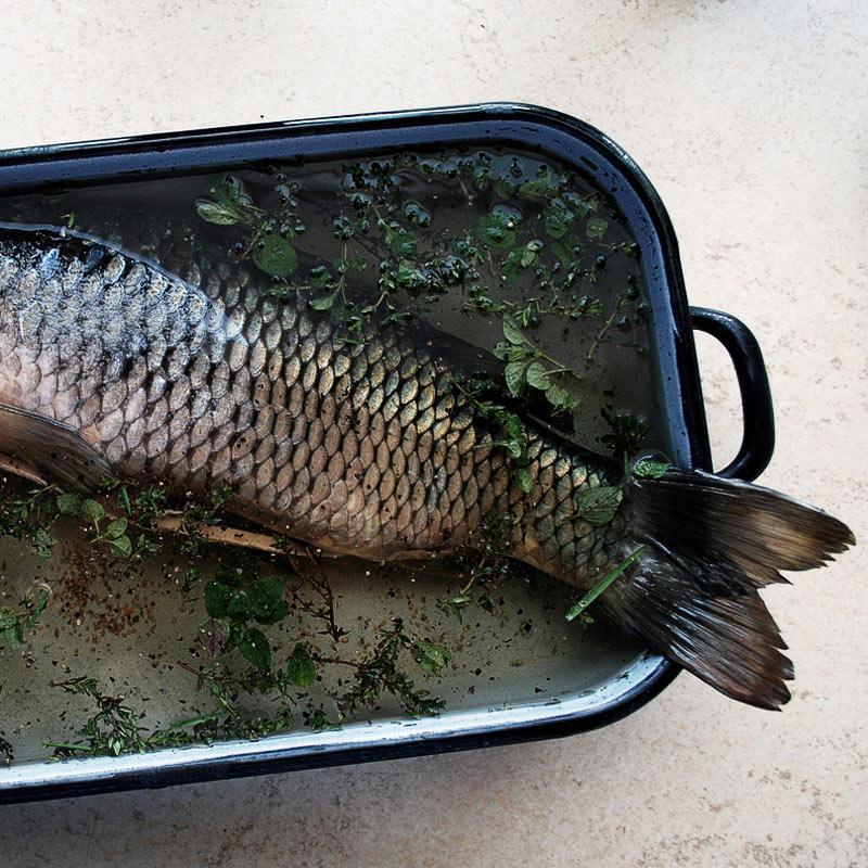 Fisch Kochkurs Zeitlers Hotel Marsberg